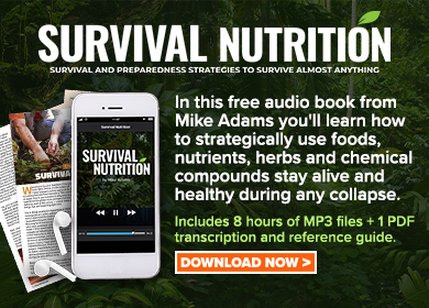 Survival Nutrition